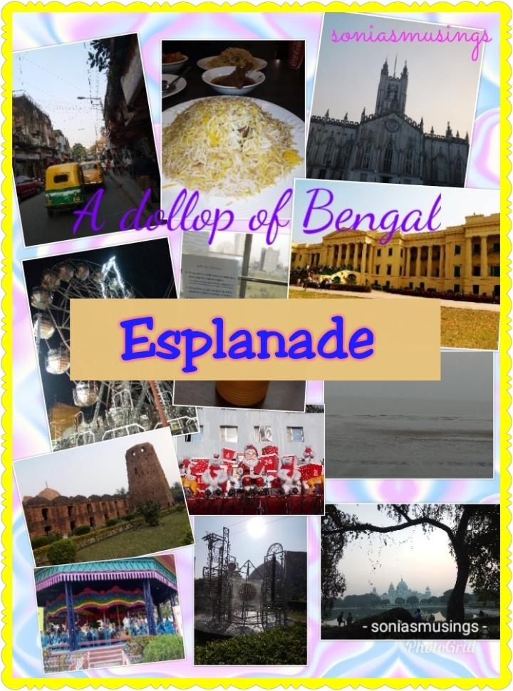A dollop of Bengal –Esplanade