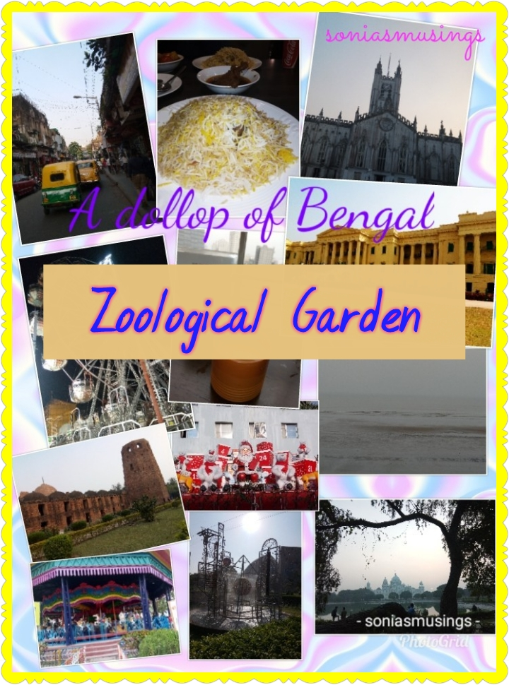 A dollop of Bengal – Zoological Garden