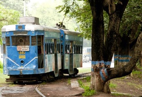 Tram - Culturebowl.jpg